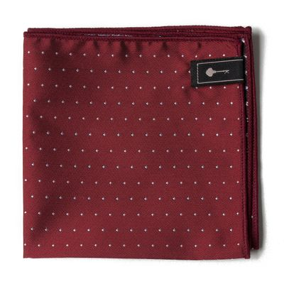 ACESSORIO-MASCULINO---LENCOS---POCKET-POINT-WINE