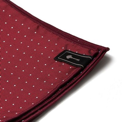 ACESSORIO-MASCULINO---LENCOS---POCKET-POINT-WINE2